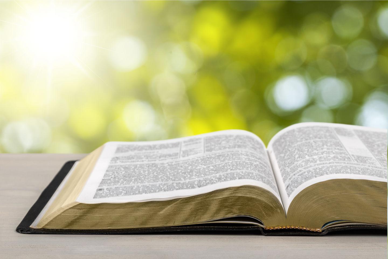 О важности Слова замолвите слово...